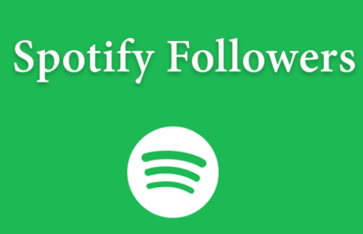 Followers Spotify